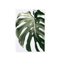 Postkarte - Monstera